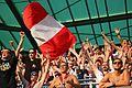 Sk Rapid Wien gegen RB Salzburg 47.jpg