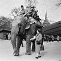 Skansen visitors and Sven Borg riding Bambina the Elephant in May 1956.jpg