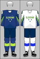 Slovenia national ice hockey team jerseys 2018 (WOG).png