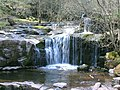 Small falls on Caerfanell River - geograph.org.uk - 401231.jpg