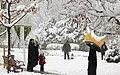 Snowy day of Tehran - 7 March 2013 13.jpg
