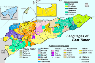 Languages of East Timor languages of a geographic region