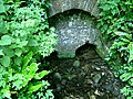 St. Aldhelm's Well, Doulting, Somerset - geograph.org.uk - 1358162.jpg