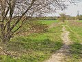 Stahnsdorf - Gruener Weg - geo.hlipp.de - 35342.jpg