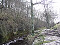 Stainforth Force - geograph.org.uk - 1182749.jpg