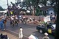 Starr-000701-1289-Dianthus caryophyllus-July 4 parade-Makawao-Maui (24422152102).jpg