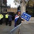Steve Bray with the London Sodem 4044.jpg