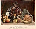 Still-life of fruit using 3-color process.jpg