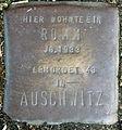 Stolperstein-Romm Jg 1933-24-Koeln-cc-by-denis-apel.jpg
