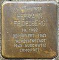 Stolpersteine Köln, Hermann Feidelberg (Humboldtstr. 42).jpg