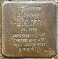 Stumbling block for Hermann Feidelberg (Humboldtstr. 42)