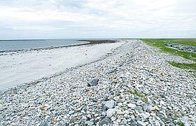 Storm Beach - geograph.org.uk - 1370159