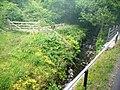 Stream alongside railway - geograph.org.uk - 1985628.jpg