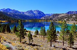 Stunning June Lake in the Fall.jpg
