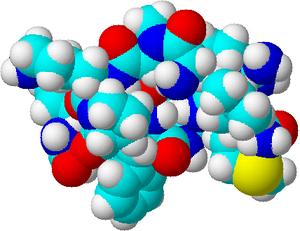 Substance P - Image: Substance P