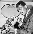 Sugar Ray Robinson 1966b.jpg
