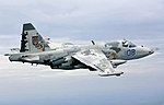 Sukhoi Su-25 in Ukrainian service 269 n (cropped).jpg