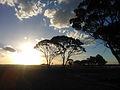 Sunset, Western Australia (10766376214).jpg
