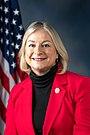 Susan Wild, Official Portrait, 115th Congress.jpg