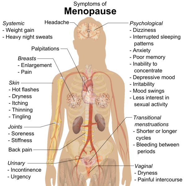 File:Symptoms of menopause (raster).png