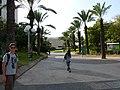 Tel Aviv-Yafo P1100383 (5154979127).jpg