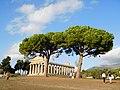 Temple of Athena (Paestum) 01.jpg