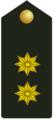 Teniente Coronel Auditor.png