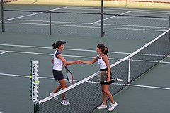 Tennis shake hands after match.jpg