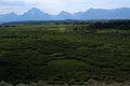 Teton Range 13.JPG