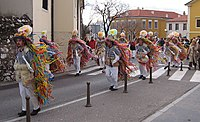The Carnival of the Istro-Romanians from Jeian, 2006.jpg