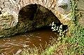 The Minnowburn Bridge near Belfast (15) - geograph.org.uk - 1451789.jpg