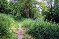 The Thames Path at Culham - geograph.org.uk - 1336776.jpg