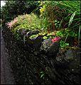 The Wet Wall. Threlkeld. - panoramio.jpg