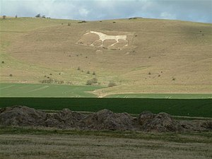 Alton Barnes White Horse - Alton Barnes White Horse in 2006.