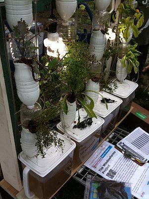 Windowfarm - a windowfarm setup