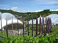 The arena at the Eden project - geograph.org.uk - 1777942.jpg