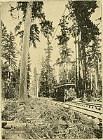 The street railway review (1891) (14574242517).jpg