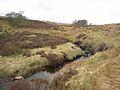 Thwaite Beck - geograph.org.uk - 365528.jpg
