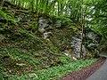 Tiefenstürmig Felsen-20200607-RM-160342.jpg