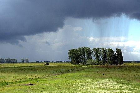 Rainy Dutch landscape