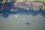 Tiszafüred, természet légi felvételen.jpg