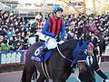Tokyo Daishoten Day at Oi racecourse (31149196434).jpg