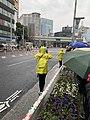 Tokyo Marathon 2019 Tokyo marathon 2019 東京マラソン2019 (40298325513).jpg