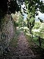 Torello 20110817 15.jpg