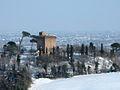 Torre Oriolo dei Fichi.jpg