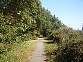 Trackbed of the former Waveney Valley Railway - geograph.org.uk - 1525424.jpg