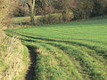 Tracks in the grass - geograph.org.uk - 1167956.jpg