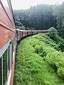 Train ride to haputhale.jpg