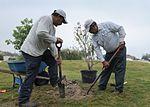 Tree planting 101025-F-OX767-014.jpg