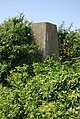 Triangulation Pillar in a hedge - geograph.org.uk - 826060.jpg
